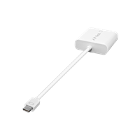 PNY-Adapter-Mini-DisplayPort-To-DVI-mini-ra.png