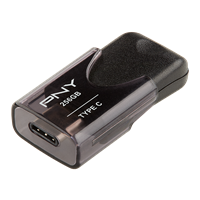 PNY-USB-Flash-Drive-Turbo-Type-C-256GB-ra.png
