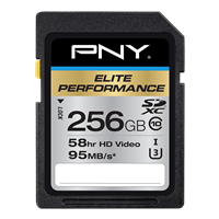 PNY-Flash-Memory-Cards-SDXC-Elite-Performance-Class-10-256GB-fr-refresh.png