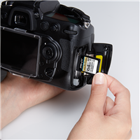 PNY-Flash-Memory-Cards-SDXC-Elite-Performance-Class-10-64GB-camera-use-refresh.png