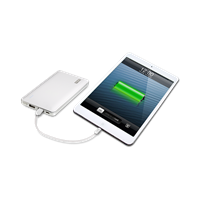 PNY-PowerPack-L8000-Rechargeable-Battery-Lightning-iPad-use.png