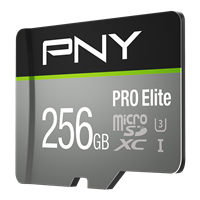 PNY-Flash-Memory-Cards-microSDXC-Pro-Elite-Class-10-256GB-ra1.png